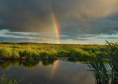 The evening rainbow. The June evening, Russia, Moscow area. Stock fotó