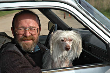 Bald the man of average years with a white Chinese dog in the car photo