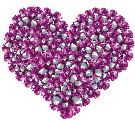 quivering: Heart from gentle petals of an iris