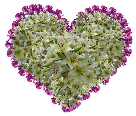 quivering: Heart from gentle petals