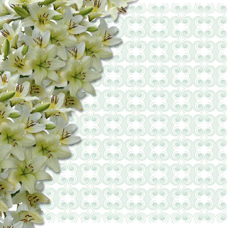 quivering: Decorative background with natural flowers