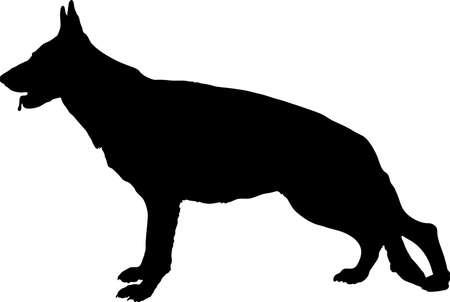 bowwow: Profile of large German Shepherd dog