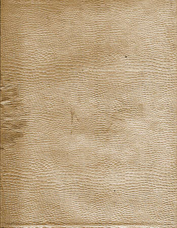 gilt: Old thin tracing-paper with relief figure Stock Photo
