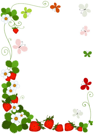 Colorful frame from berries of a strawberry, flowers, leaves and butterflies on a white  Vector