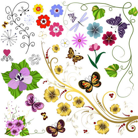 Collection  abstract flowers and butterflies for design on white Vector