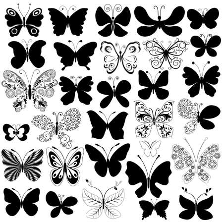 Big collection silhouette black butterflies for design isolated on white (vector) Vector