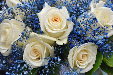 Wedding bouquet with white roses and blue flowers photo