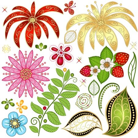 Set colorful floral design elements isolated on white (vector) Vector
