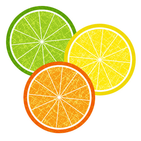Colorful set of orange and lemon slices in grunge style for design (vector eps 10) Vector