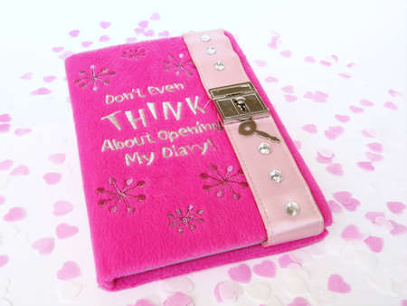 valentine romantic diary