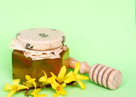 Spring honey Stock Photo - 948916