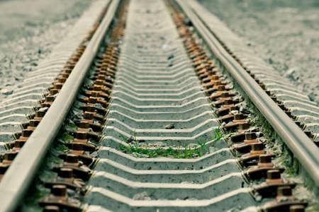 transpozycji: Na rzucone kolejowej trawa rośnie