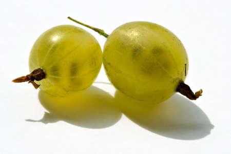 grosella: Juicy bayas de un gooseberry son brill� en el sol