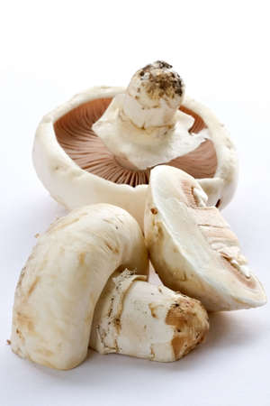 stipe: Mushrooms champignons-natural, which have grown in a wood without fertilizers and consequently especially tasty Stock Photo