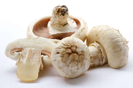 Mushrooms champignons-natural, which have grown in a wood without fertilizers and consequently especially tasty photo