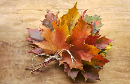 leave: Autumn bouquet from leaves in a gift to the sentimental person Stock Photo