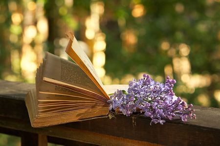 poetry: Romantic evening in the country house-sunset,  book of poetry and  lilac branch Stock Photo