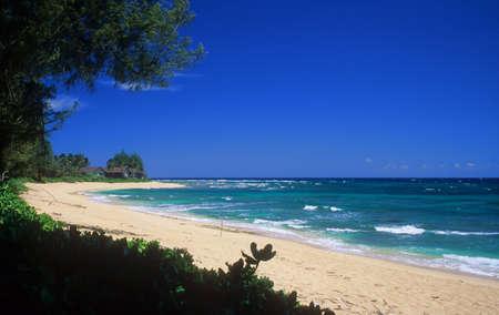 kauai: Empty tropical beach on the beautiful north shore of Kauai, Hawaii.
