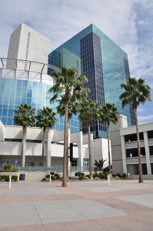 riverside trees: Downtown Riverside office tower and palm trees.