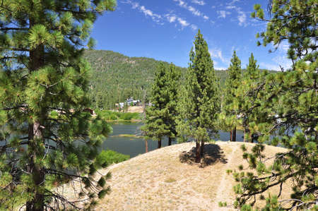 ponderosa: Looking at the north end of Big Bear Lake from a hilltop. Stock Photo