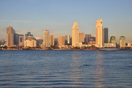 diego: View of the downtown San Diego, California skyline.