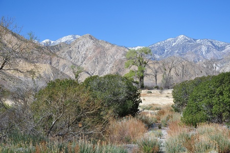 Some snow remains at the higher elevations of Whitewater Canyon Preserve in Southern California. Stock Photo - 12674809