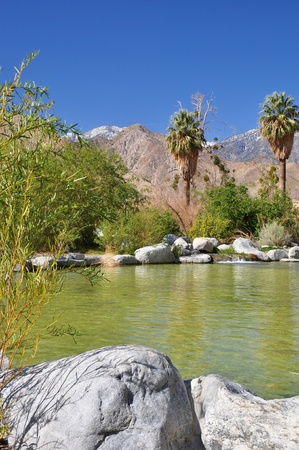 high desert: View of a small desert pond near the town of Palm Springs, California.