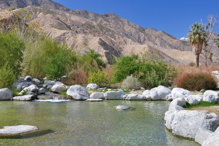 high desert: A small stream feeds into a pond near the desert town of Plm Springs, California.