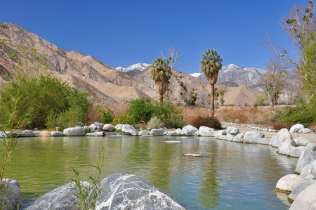 mountain oasis: View of a desert oasis in Whitewater Canyon near Palm Springs, California. Stock Photo