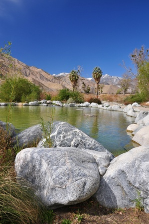 Water and lush vegetation is found in Whitewater Canyon near Palm Springs, California.
