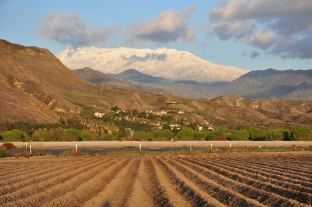 View of snow-capped Mount San Jacinto and farmland in Southern California. Stock Photo - 13200060