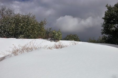 snowbank: This white snowbank stands in stark contrast to the stormy sky on Mount San Jacinto in Southern California  Stock Photo
