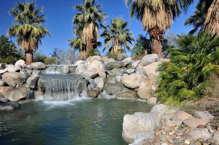 A small waterfall is surrounded by palm trees in Palm Desert, California  photo