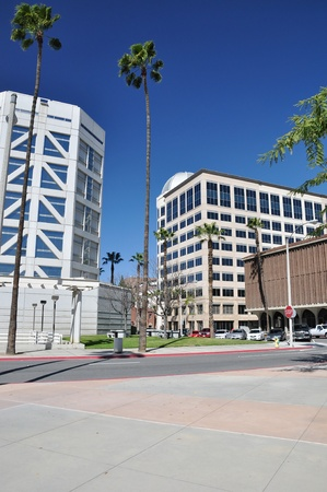 riverside tree: View of office towers and palm trees in downtown Riverside, California. Stock Photo