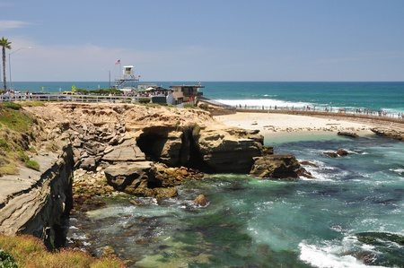 congregate: Seals like to congregate at this cove known as  Children s Pool  in La Jolla, California