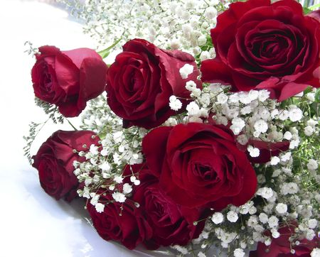 admirer:  Bouquet for loved, roses  on white background