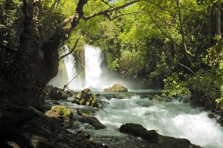 cours d eau: flux de la chute d'eau et Hermon, Isra�l