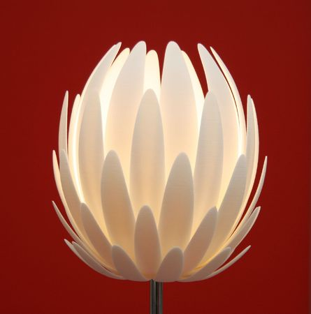 floor lamp  flower