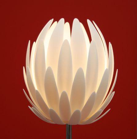 floor lamp  flower