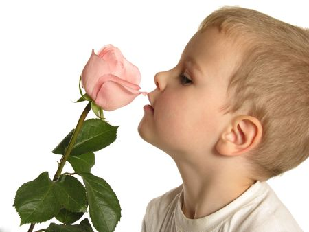 smack: boy with rose