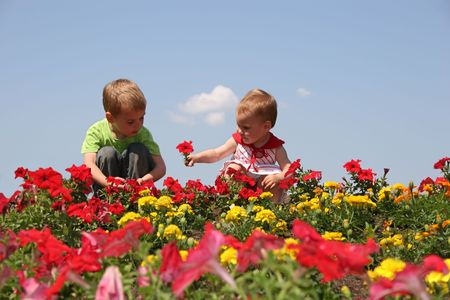 baby and child in flowers Stock Photo