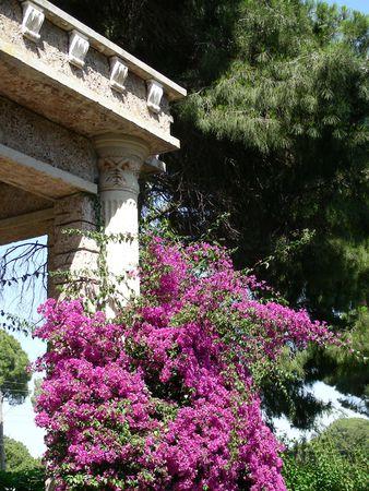 beaty: antique beaty in resort in Belek, Turkey