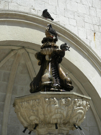 historica: Pigeons drinking water on fountain at Dubrovnik           Stock Photo