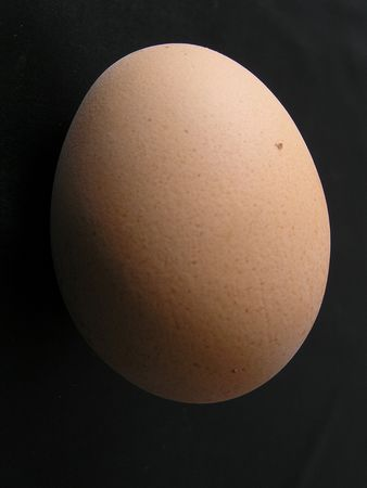 On a black background a chicken egg. The photo is made in Ukraine.          photo