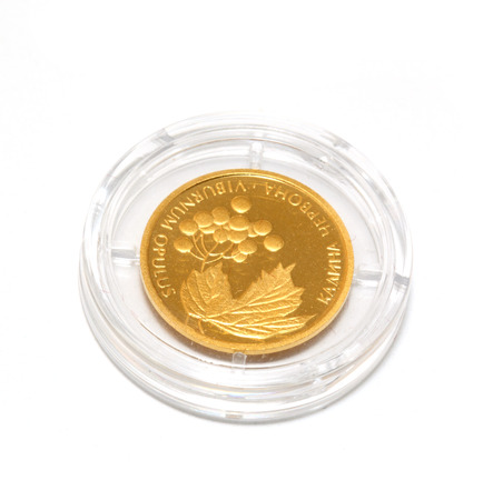 Gold coin of Ukraine. two hryvnia photo