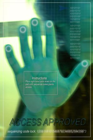 access granted: Electronic hand scan