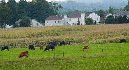Suburban housing encroaching on farm fields Stock Photo