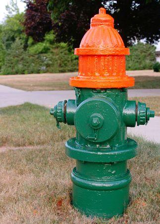garish: Freshly painted fire hydrant, in garish green and orange