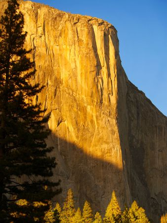 el capitan: El Capitan and trees below in golden light of sunset Stock Photo