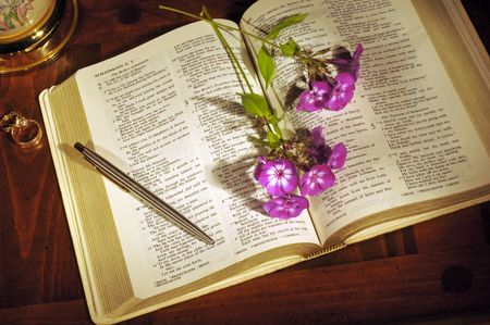 Bible open to Song of Solomon with flowers, pen, and  rings photo